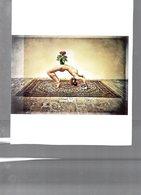3400   NU FEMININ    ????     ECRITE  22CM 18 CM  GRD ENVELLOPPE - Nus Artistiques (1960-…)