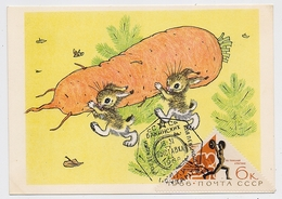 CARTE MAXIMUM CM Card USSR RUSSIA Sport Rabbit Hare Barbell Humour Comics Painting - Cartes Maximum