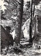 77 - Dormelles - Les Rochers De Montaigu - France