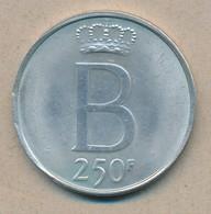 België/Belgique 250 Fr Bauduoin 1976 Fr Morin 780 (120328) - 1951-1993: Baudouin I