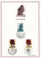Feuillet 1526 1527 Arme Bouleau Hêtre Natuurbehoud - Feuillets