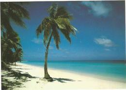 CPM Nouvelle Calédonie Ouvéa - Nouvelle Calédonie