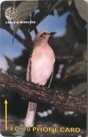 DOMINIQUE  -  Phonecard  -  Cable § Wireless  - Tropical Mocking Bird  -  EC $ 10 - Dominica