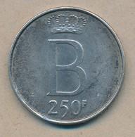 België/Belgique 250 Fr Boudewijn 1976 Vl Morin 781 (120330) - 1951-1993: Baudouin I