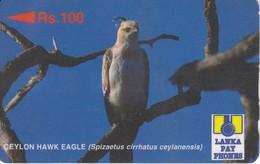 (23SRLB) TARJETA DE SRI LANKA DE UN AGUILA  (BIRD-PAJARO-EAGLE) (con Marcas) - Sri Lanka (Ceylon)