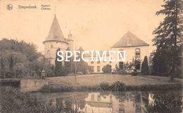 Kasteel - Diepenbeek - Diepenbeek