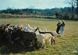Folklore Du Poitou Bergères En Costumes Mothais Conduisant Les Chèvres Au Pâturage (2 Scans) - Costumes