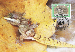 1986 - CABO VERDE - Pygmy Razo Gecko - Chatogekko WWF - Cap Vert