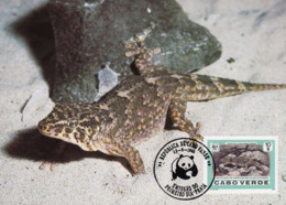 Cabo Verde 1986 , Maximum Card - Giant Cape Verde Gecko - WWF - First Day 15-6-1896 - Cape Verde