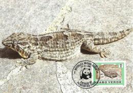 Cabo Verde 1986 , Maximum Card - Giant Cape Verde Gecko - WWF - First Day 15-6-1896 - Cap Vert