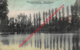 Pêche Royale - Watermaal-Bosvoorde - Watermael-Boitsfort - Watermael-Boitsfort - Watermaal-Bosvoorde
