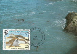 1986 - NOUAKCHOTT - Monk Seal - Moine Otarie Maximum Card - Mediterranean Monk Seal - WWF - First Day 12 JUIN 1986 - Mauritanie