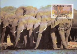 WWF, Uganda Kampala 1991 The African Elephant, Carte Maximum - Ouganda