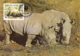 1987 - SWAZILAND - White Rhino - Rhinoceros Blanc - Swaziland