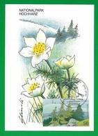 BRD 2002  Mi.Nr. 2268 Aus Block 59 , Nationalpark Hochharz - Maximum Card - Berlin Zentrum Erstausgabe 04.07. 2002 - BRD