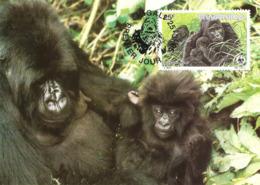 1985 - RWANDA Kigali - Mountain Gorilla - Gorille Des Montagnes - Rwanda