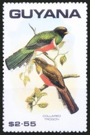 Collared Trogon, Birds, Guyana 1990 MNH - Cuckoos & Turacos