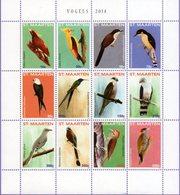 St. Maarten 2014. Fauna. Birds. Vogels - Niederländische Antillen, Curaçao, Aruba