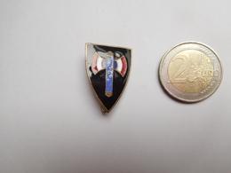Superbe Insigne En émail , Armée Militaire , Francisque , Vichy , Pétain - Heer