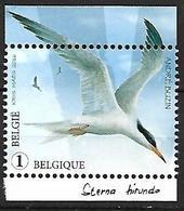 Belgium - MNH 2017 :  Common Tern  -  Sterna Hirundo - Seagulls