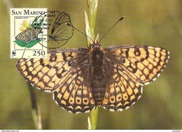 1993 - SAN MARINO - Papillon Damier - Glanville Fritillary - Saint-Marin