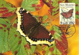 1993 - SAN MARINO - Morio - Camberwell Beauty - Saint-Marin