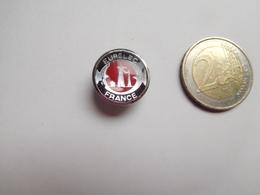 Insigne De Boutonniére  ( No Pin's ) ,  Eurelec France , EURELEC - Institut Européen D'Électronique Et D'Informatique - Informatique