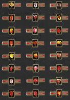 Série De 24 Bagues De Cigares Help Yourself - Tulipes - Bagues De Cigares
