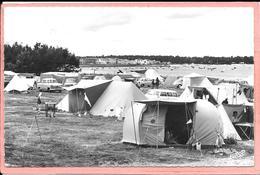 Ile De Ré Rivedoux - Le Camping - Ile De Ré