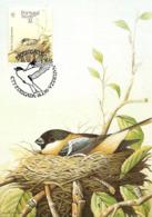 1990 - ACORES - Ponta Delgada - Sao Miguel Bullfinch WWF - Açores