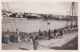 372546Audierne, Le Port Et Vue Sur Poulgoazec - Audierne