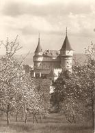 1579/A/FG/20 - BOINICKY ZAMOK - Particolar - Slovacchia