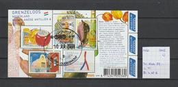 Nederland 2008 - Yv. Blok 97 Gestempeld/oblitéré/used - Blocs