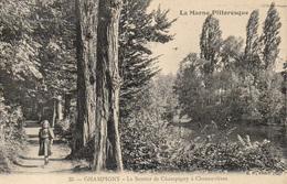 94 - Série La Marne Pittoresque  N°35 Champigny -  Sentier De Champigny à Chennevières - Arbre , - Champigny Sur Marne