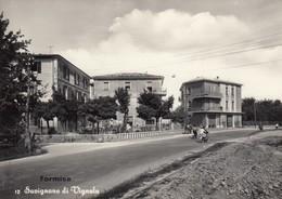 Emilia Romagna - Modena - Savignano - Formica - F. Grande - Anni 50 - Molto Bella - Other Cities