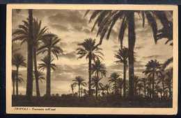 FA703 TRIPOLI - TRAMONTO NELL'OASI - Libia
