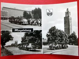 Magdeburg - Minibusse Des Kulturparkes Rotohorn - Wappen - Echtfoto - DDR 1971 - Bus - Magdeburg