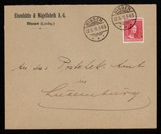 NEW - Luxemburg Luxembourg  EISENHÜTTE NÄGELFABRIK  BISSEN  1916 Enveloppe - Cartes Postales