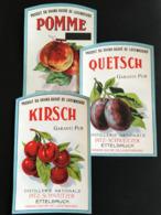 •• NEW ••  ETIQUETTES Anciennes PITZ SCHWEITZER  Ettelbruck Luxembourg Vers 1950/1960 Alcool Biere Brasserie Liqueur (3) - Luxembourg