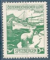 """Vignette  """"Oesterreichischer Lloyd - Thalia /Spitzbergen""""  (mit Eisbär)           Ca. 1910 - Other"""