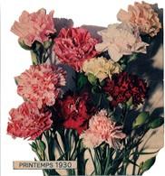 Printemps 1930 - Grand Découpis De Fleurs - 19 X 21 Cm - Flowers