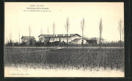 CPA Cars-Blaye, Domaine De La Gruppe - Blaye