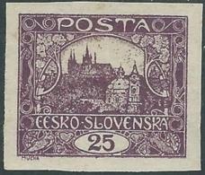 1919 CECOSLOVACCHIA CASTELLO DI PRAGA SENZA CARTIGLI 25 H ND MH * - RC18-10 - Ungebraucht