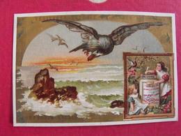 Image Chromo Extrait De Viande Liebig. S 101. Oiseau Fleurs Fillette. 1878. - Liebig