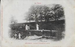 REALMONT  (Le Tarn ) Ancienne Passerelle De Lalande  Animée ( 1908 ) - Realmont