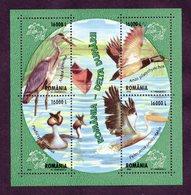 Romania 2004 Marine Birds. M/S** - Palmípedos Marinos