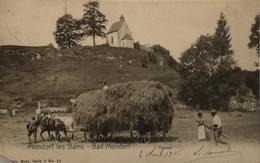 Mondorf Les Bains (Luxembourg) Castel - Corner Missing! 1906 - Mondorf-les-Bains