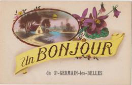 Un BONJOUR De Saint GERMAIN Les Belles(87) CPA - Violettes - Saint Germain Les Belles