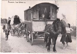 Provence - Les Gitans - & Horse Carriage, Gipsy - Saintes Maries De La Mer