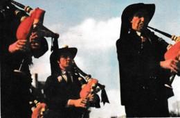 FETES DE LA DUCHESSE ANNE DE QUIMPER ,PUB BISCOTTE PELLETIER,CORNEMUSE,COULEUR  REF 64619 - Manifestations